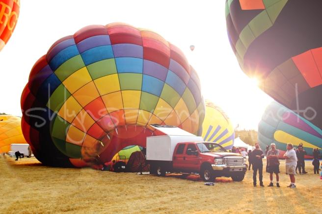 balloons-wm