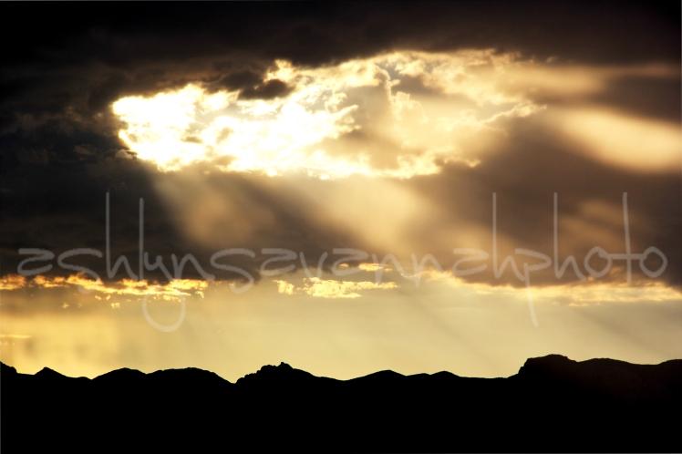 sun rays-wm